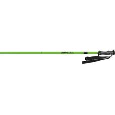 Ski Poles Masters THE REBEL green